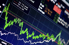 RENUKA HOLDINGS Target 50.00 Equity